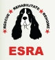 English Springer Spaniel Rescue logo
