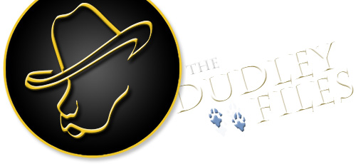 Dudle Files logo