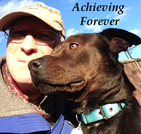 The logo of Achieving Forever, a YouTube series about helping foster dogs become more adoptable